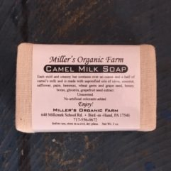 Camel Milk Soap – unscented – 3 oz Bar