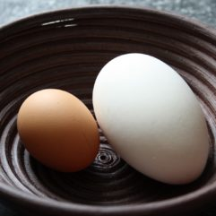 Goose Egg – Unwashed – Fertile – Each