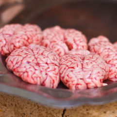 Pork Brain – 8oz